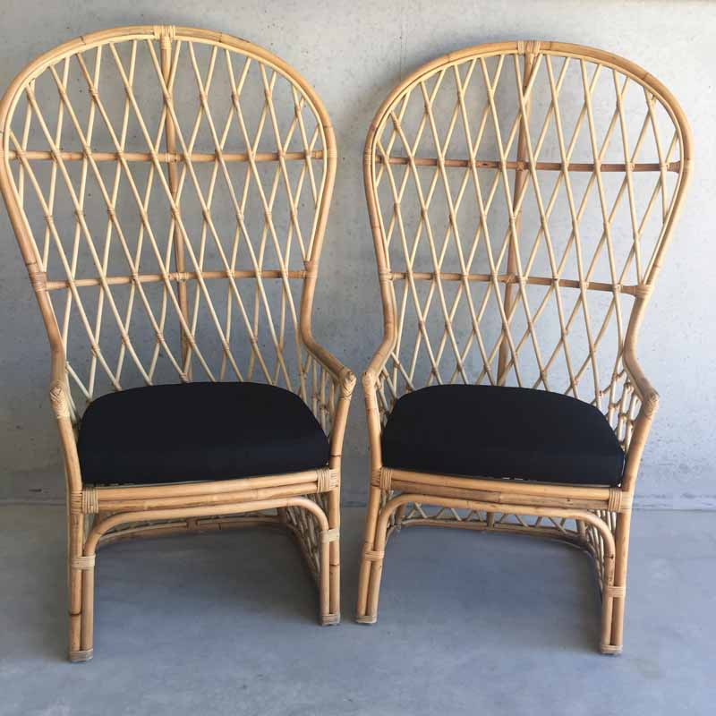 Luna Peacock Chairs