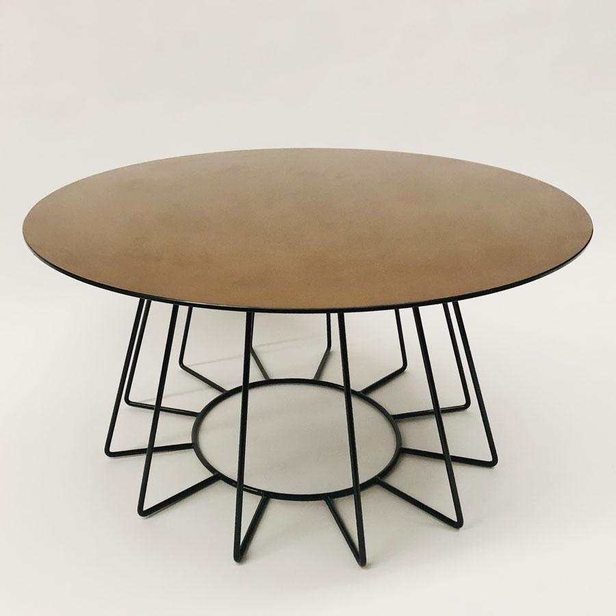 Goldie Hawn Coffee Table